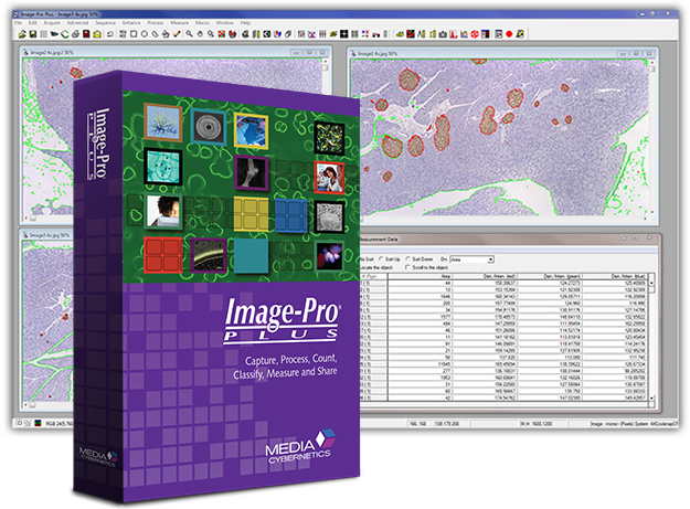 Image Processing Software - Image-Pro Plus
